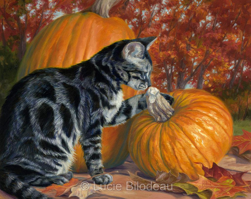 Lucie-Bilodeau-Pumpkin-Season.jpg