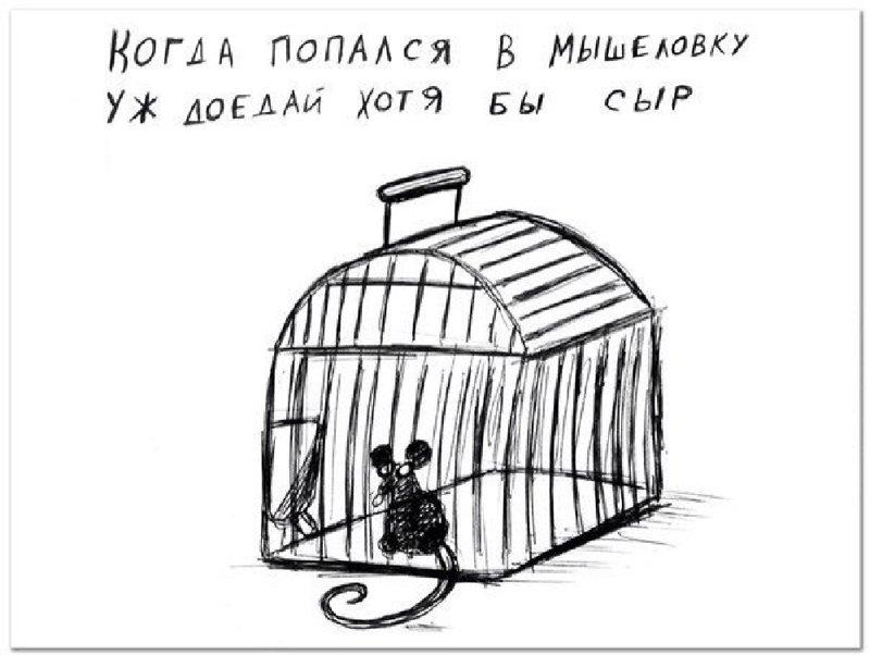 DVUSTISIY-VLADIMIRA-POLYKOVA.jpg