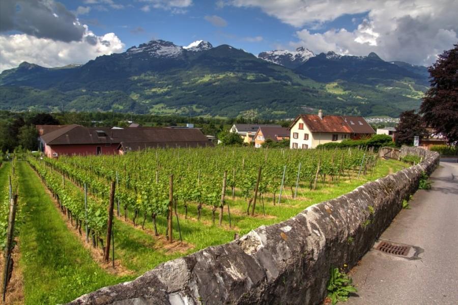 Liechtenstein_20160607_Liechtenstein_Vaduz_0001_2364_eyJpZCI6Ijc1MzIiLCJ3IjoiMTAyNCJ9_preview.jpg