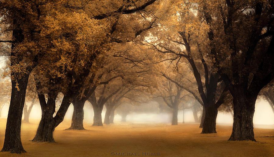 autumn-morning-michael-huber.jpg