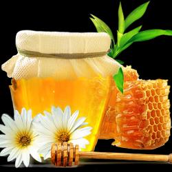 Honey_017.th.png