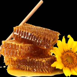 Honey_029.th.png