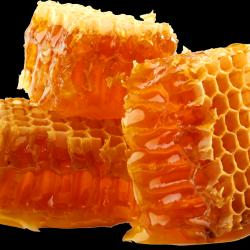 Honey_031.th.png
