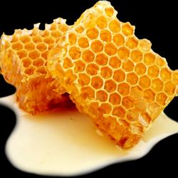 Honey_033.th.png