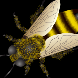 bee_PNG0.th.png