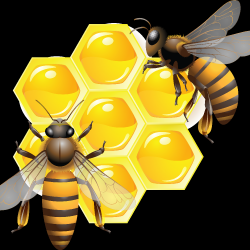 honey_PNG11553-1.th.png