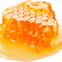 honey_PNG11560.th.png