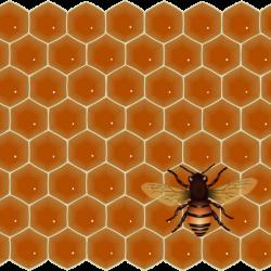 honeycombandbee_Vector_Clipart.th.png